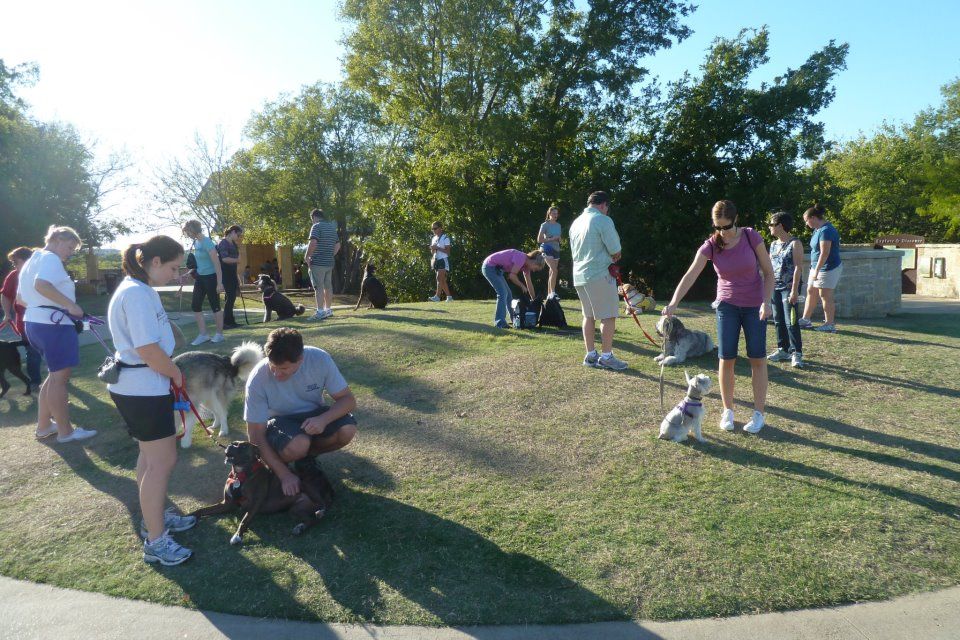 Fido's Finest Dog Training - Outdoor Group Classes